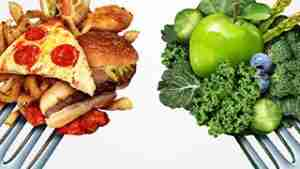 How Many Calories Can Be Absorbed In One Day